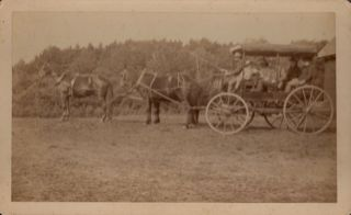 Vintage Albumen Print Photograph of a Horse Drawn Cart with Driver and 4 Passengers. anon