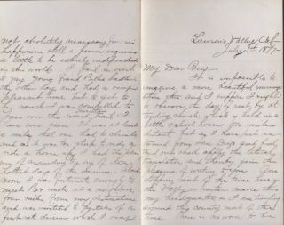 1877 Letter written from Lawson's Valley, California regarding Work, Climate, Living and...