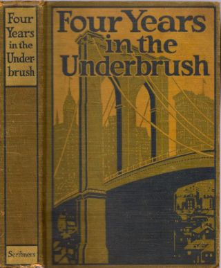 Four Years in the Underbrush. Adventures As A Working Woman in New York. Anon
